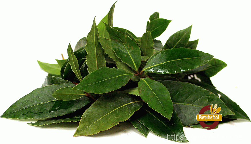 лавр,  bay leaf